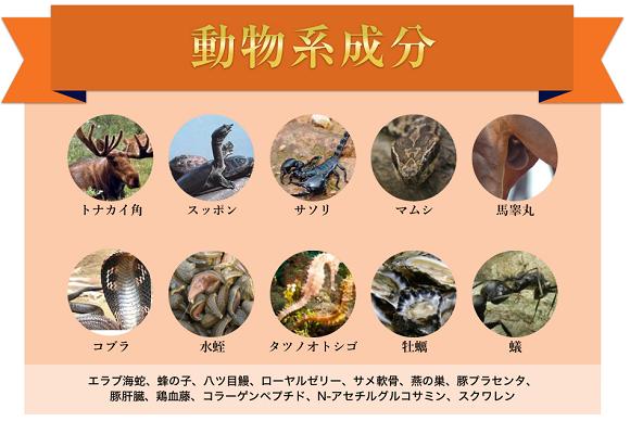 動物系成分