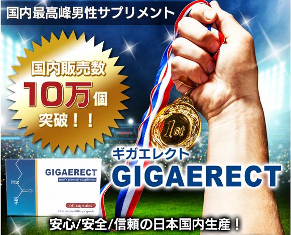 ギガエレクト(GIGAERECT)